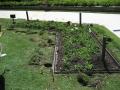 Sydney Botanic Gardens FormBoss metal garden edging (18) - garden edging | Metal Garden Edging | lawn edging | landscape edging |  garden design