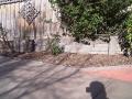 curved_garden_borders__paths_that_are_simple_to_install_29 - garden edging | Metal Garden Edging | lawn edging | landscape edging |  garden design