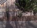 curved_garden_borders__paths_that_are_simple_to_install_6 - garden edging | Metal Garden Edging | lawn edging | landscape edging |  garden design