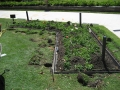 sydney-botanic-gardens-formboss-metal-garden-edging-18
