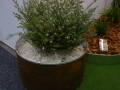 galvanised-ring-inside-corten-pre-made-ring