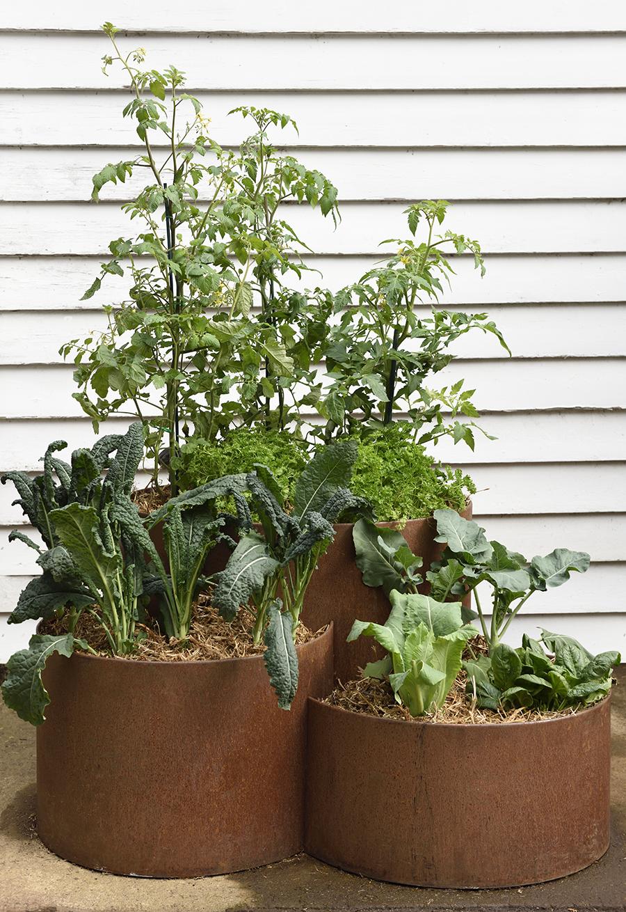 580 three teired planter 2