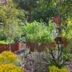 Sustainable Garden Designs Perth FormBoss