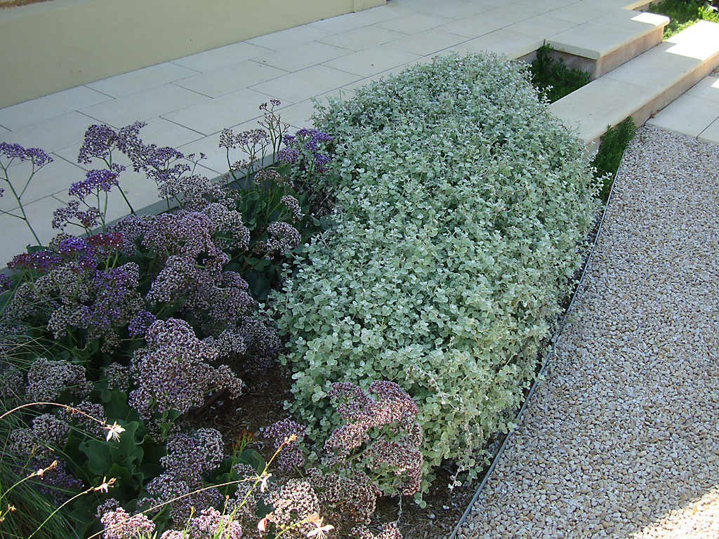 Wax Design - garden edging | Metal Garden Edging | lawn edging | landscape edging |  garden design