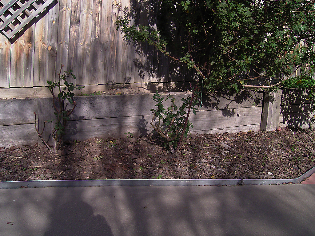 curved_garden_borders__paths_that_are_simple_to_install_6 - garden edging   Metal Garden Edging   lawn edging   landscape edging    garden design