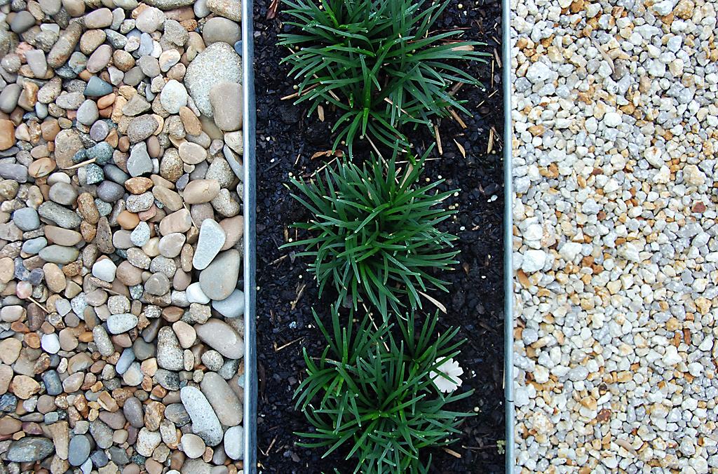 Joselito - garden edging | Metal Garden Edging | lawn edging | landscape edging |  garden design