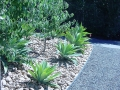 matt - garden edging | Metal Garden Edging | lawn edging | landscape edging | garden design